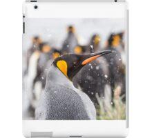 Gold Harbour King iPad Case/Skin