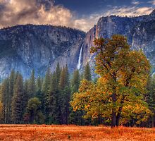 The Radiance of October by James Hoffman