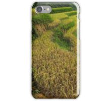 grains and grains iPhone Case/Skin