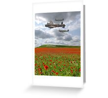 A Salute to Heroes  Greeting Card