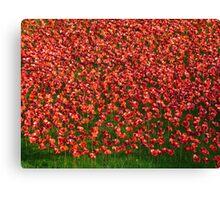 Ceramic poppies Canvas Print
