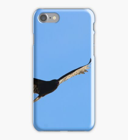 Turkey Vulture iPhone Case/Skin