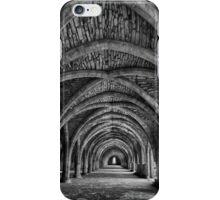Fountains Abbey Cellarium iPhone Case/Skin