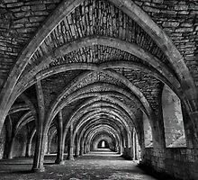 Fountains Abbey Cellarium by Quattrophoto