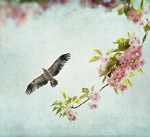 Bird and Pink and Green Flowering Branch on Blue by BrookeRyanPhoto