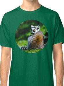 Young Lemur Classic T-Shirt