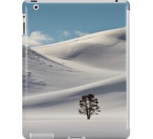 Hayden Valley Solitude iPad Case/Skin