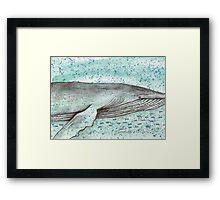 Whale vector Framed Print