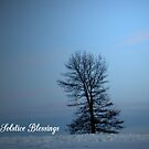 Solstice Blessings by WildThingPhotos