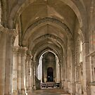 Vaulted Archway by phil decocco
