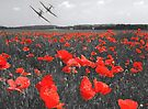 The Few - Includes donation to the Poppy Appeal by SwampDogPhoto