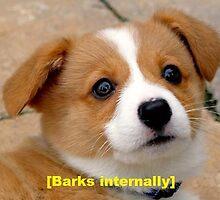 BARKS INTERNALLY by heyericamay