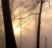 Foggy morning in New York City  by Alberto  DeJesus