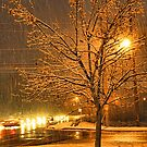"""A Snowy Evening in Knoxville"" (no.3, from this series)... products  by © Bob Hall"