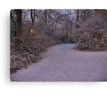 A Curve in the Trail... products Canvas Print