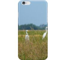 Three Herons & A Red Wasp iPhone Case/Skin