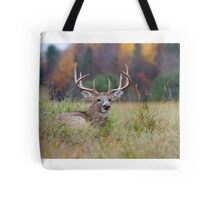 Autumn in Canada - White tailed deer Buck Tote Bag