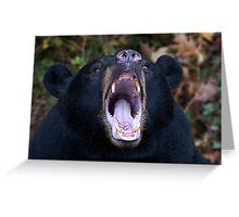 """I am not Yogi!!!"" - Black Bear Greeting Card"