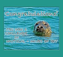 banner nautical challenge winner - not for sale by MotherNature