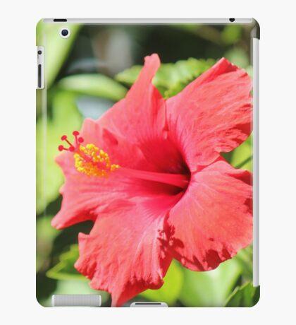 Hibiscus of Leesburg iPad Case/Skin