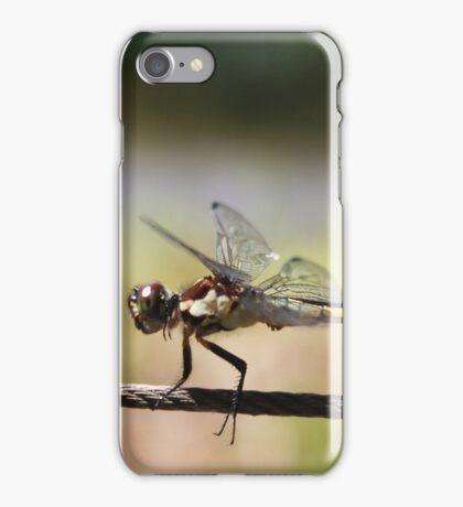 Flying Dragon iPhone Case/Skin