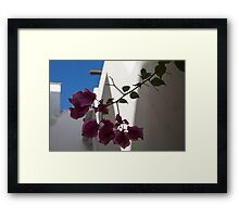 Contemplating Mediterranean Vacations - Whitewashed Walls and Bougainvilleas Framed Print