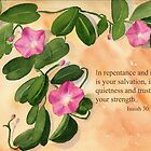 Salvation & Strength - Isaiah 30:15 by Diane Hall