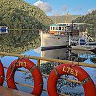 Corinna Moorings - Pieman River - Tarkine Wilderness - Tasmania by TonyCrehan