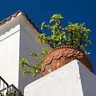 Contemplating Mediterranean Vacations - Red Tile Roofs and Terracotta Flowerpots by Georgia Mizuleva