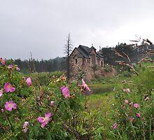 Chapel in Colorado by Greg Birkett