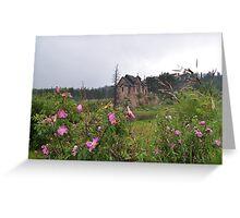 Chapel in Colorado Greeting Card