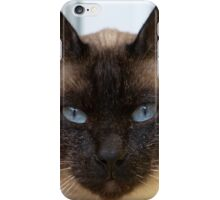 Gorgeous Bluepoint Siamese Cat iPhone Case/Skin