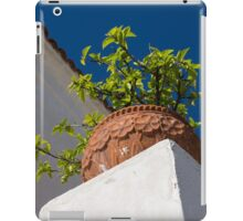Contemplating Mediterranean Vacations - Red Tile Roofs and Terracotta Flowerpots iPad Case/Skin