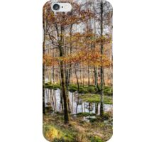 Glenfinnan, Scotland iPhone Case/Skin