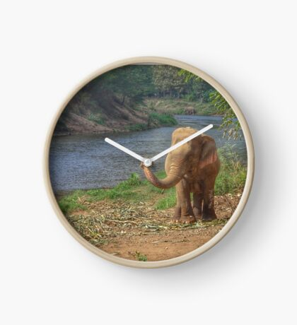 Rescued Elephant Clock
