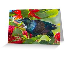 Tui in waratah flowers. Greeting Card