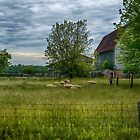 Summer Barn by JKKimball