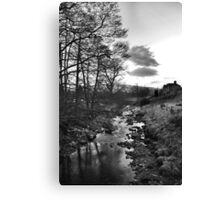 A very cold day Canvas Print