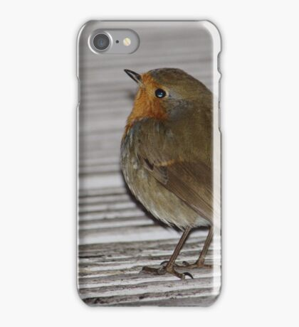 Robin At Deli Door iPhone Case/Skin