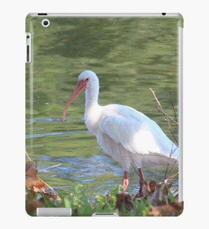 Wading Ibis iPad Case/Skin