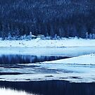 Frozen Lake in the Black Forest by Imi Koetz