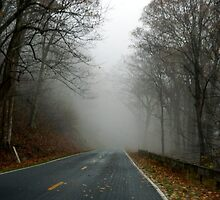Out of the Fog.......    ^ by ctheworld