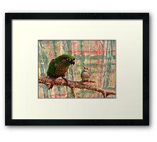 Everybody Needs A Little Encouragement - Sparrow & Parrot - NZ Framed Print