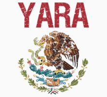 Yara Surname Mexican by surnames
