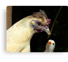 Wow!! I Need That One Mum... Hen And Chick - NZ Canvas Print