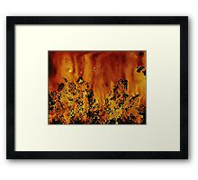 WDV - 205 - Snowfield and Sunset Framed Print