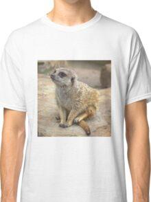 Meerkat Classic T-Shirt