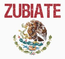 Zubiate Surname Mexican by surnames