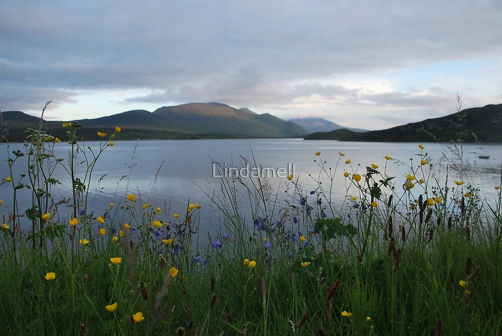 Flowers by the Kyle by Lindamell