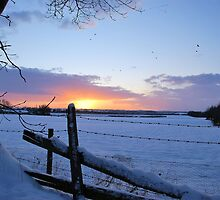 Cold Sunset by Lindamell